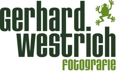 files/vorspiel_ssl_bln/bilder/koop/logo_Gerhard_Westrich.jpeg